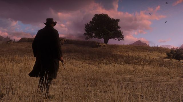 Red Dead2 5